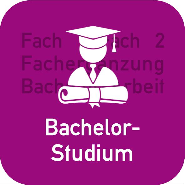 Aufbau des Bachelorstudiums