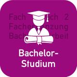 Aufbau Bachelor